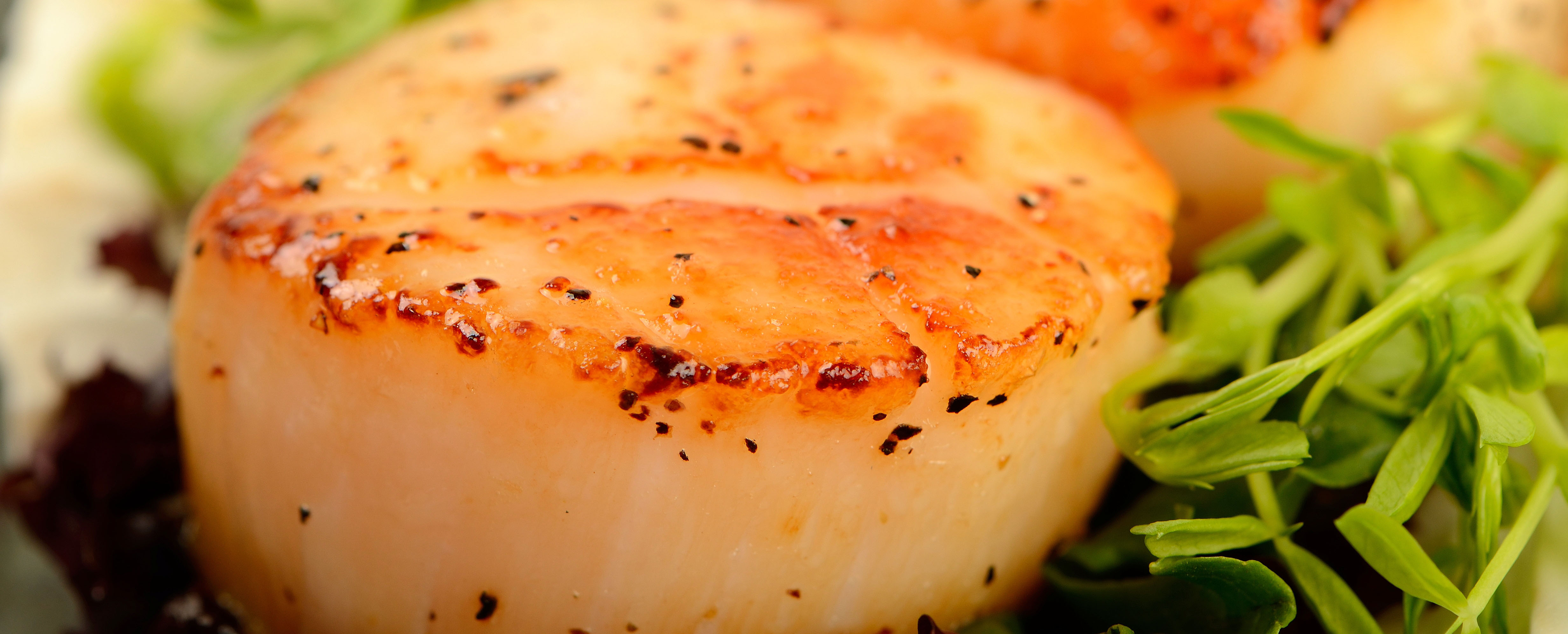 Broiled Ginger Scallops